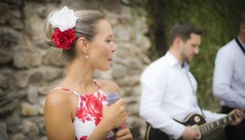 Svatební hostina v Úsobí